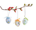 Easter eggs on a flowering branch Stock Photography