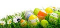 Easter Eggs And Flowers In Gra...