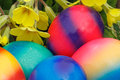 Easter eggs with flowers in a meadow Royalty Free Stock Image