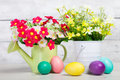 Easter eggs and flowers with spring flower Stock Image