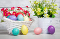 Easter eggs and flowers with spring flower Royalty Free Stock Photos