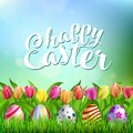 Easter Eggs on Fresh Green Grass Royalty Free Stock Photo
