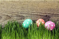 Easter eggs in fresh green grass on old wooden background.