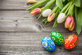 Easter eggs and fresh spring tulips on weathered wooden background Stock Photography