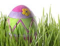 Easter eggs in the grass decorated Stock Image