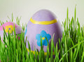 Easter eggs in the grass decorated selective focus Royalty Free Stock Photo