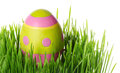 Easter eggs in the grass decorated on white background Royalty Free Stock Images