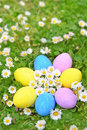 Easter eggs on the grass flower Royalty Free Stock Photo