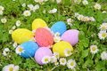 Easter eggs on the grass flower Stock Image
