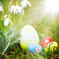 Easter eggs in grass and snowdrops Stock Image