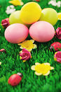 Easter eggs in green Stock Images