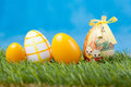 Easter eggs green grass Royalty Free Stock Photos
