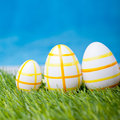 Easter eggs green grass Stock Images