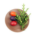 Easter eggs green sprig brow plate white background Royalty Free Stock Images