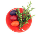 Easter eggs green sprig red plate white background Royalty Free Stock Photos