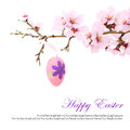 Easter eggs hanging almond branch Stock Photos