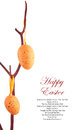 Easter eggs hanging branch Royalty Free Stock Photos