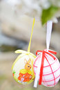 Easter eggs hanging on branch Royalty Free Stock Photography