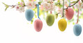 Image : Easter eye bokeh palm