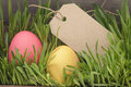 Easter eggs hiden in grass border composition vintage toned Royalty Free Stock Images