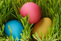 Easter eggs hiden in grass close up photo Royalty Free Stock Photos