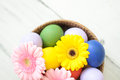 Easter eggs inside a wicker basket with daisies Stock Photography