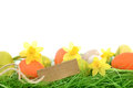 Easter eggs and lent lilies Royalty Free Stock Photos