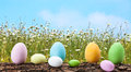 Easter Eggs In The Meadow Stock Photo