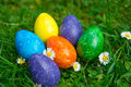 Easter eggs in the meadow Stock Images