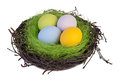 Easter eggs in a nest Royalty Free Stock Photo