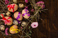 Easter eggs nest with assorted an still life Royalty Free Stock Image