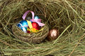 Easter eggs in a nest of hay Royalty Free Stock Photography