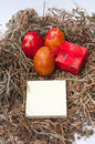 Easter eggs in the nest and red box and empty message paper Stock Photo