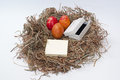 Easter eggs in the nest and white box and empty message paper Royalty Free Stock Photo