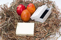 Easter eggs in the nest and white box and empty message paper Royalty Free Stock Photography