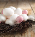 Easter eggs nest wooden background Royalty Free Stock Photography