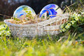 Easter eggs painted in a basket with flowers spring celebration Royalty Free Stock Images