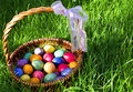 Easter eggs painted in basket on grass Royalty Free Stock Photos