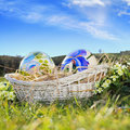 Easter eggs painted and blue sky with flowers in a basket in background Stock Images