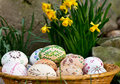 Easter eggs painted with grass in the garden Stock Image