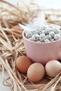 Easter eggs in a pink cup close up Royalty Free Stock Photo