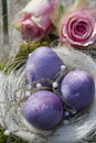 Easter eggs in purple with roses and pearls Royalty Free Stock Photo