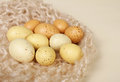 Easter eggs or regular on off white solid background on a knit fabric Royalty Free Stock Images