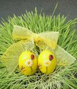 Easter eggs with ribbon on grass Royalty Free Stock Photography