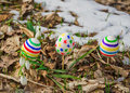 Easter Eggs with snowdrops Royalty Free Stock Photography