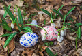 Easter Eggs with snowdrops Royalty Free Stock Photos