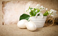 Easter eggs and snowdrops in a basket Royalty Free Stock Photos
