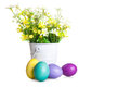 Easter eggs with spring flower in the basket Stock Photos