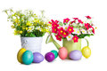 Easter eggs with spring flower in the basket Royalty Free Stock Photo