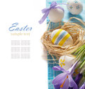 Easter eggs with spring flower on white background Royalty Free Stock Photo